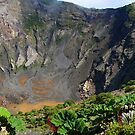 Irazu Volcano Crater Panorama by Al Bourassa