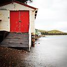Connellys Marsh, Tasmania.  by Alex Wise
