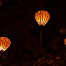 Photo of Golden Paper Lanterns by Angela Ferguson