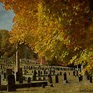 Watching over the Fallen in Fall by Debbie Robbins
