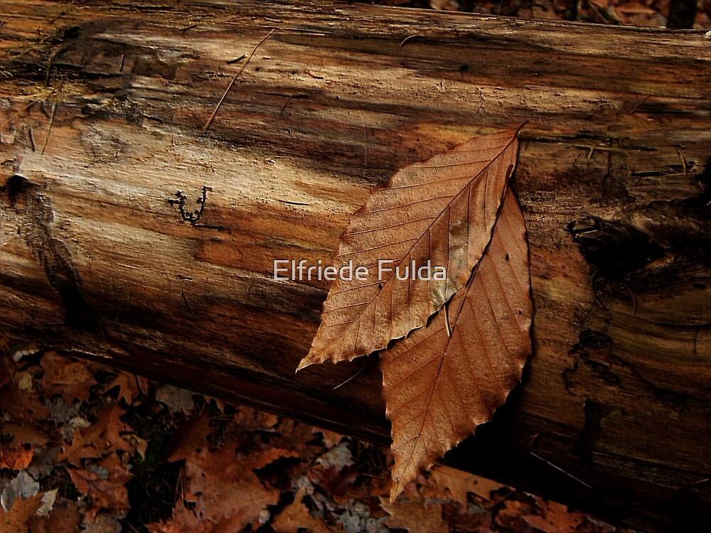"""Resting Place"" by Elfriede Fulda"