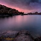 Subdued Pink by Bob Larson