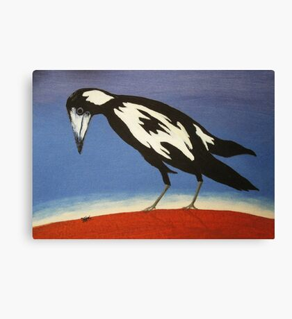 THE INQUISITIVE MAGPIE (AUSTRALIA) Canvas Print