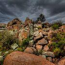 Rock Bunch by Bob Larson