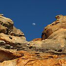 Moon in the Notch by Reef Ecoimages