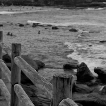Bronte timber fence by Jarivip