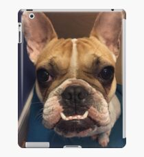 Dog Wonder iPad Case/Skin