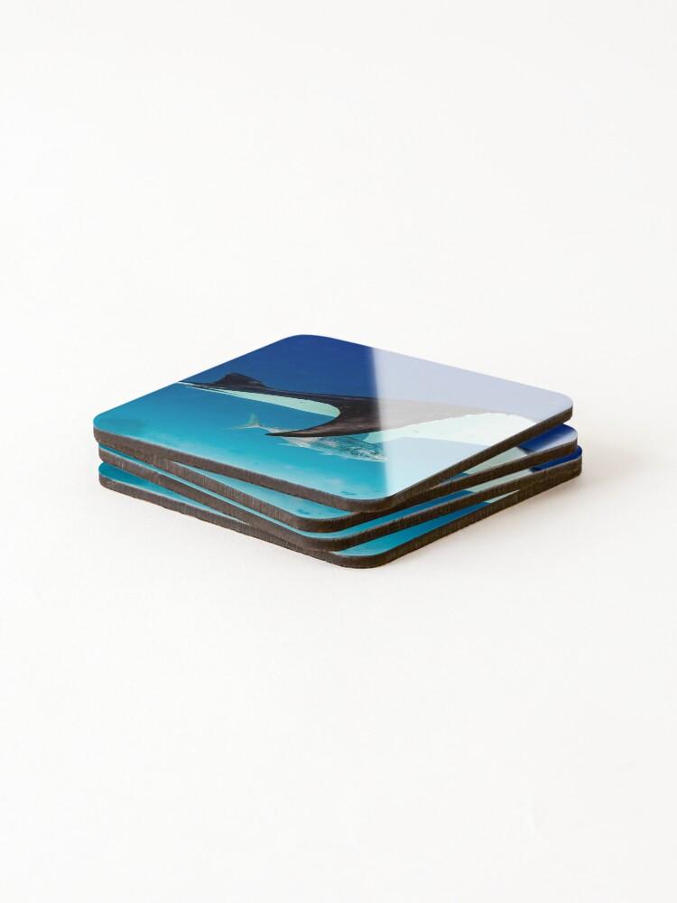 Alternate view of Manta companion Coasters (Set of 4)