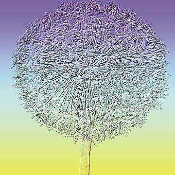 Stylized dandelion flower head by dizzyg