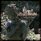 Bath Time For Sparrows by Chris Lord