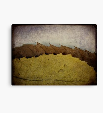 autumn waves Canvas Print
