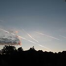 Contrails In The Sky (6903) by Tony Payne