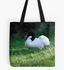Black Necked Swan Tote Bag