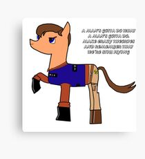 Nathan pony fillion Canvas Print