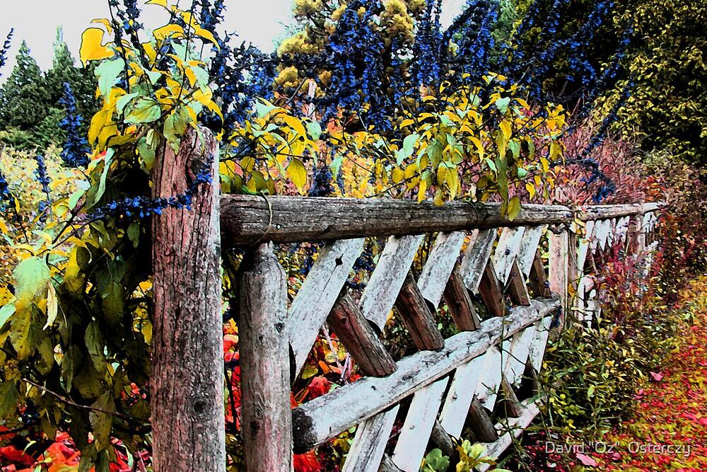 """Fence Posts by David """"Oz""""  Osterczy"""