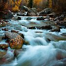 Mountain Creek by velkovski