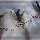 Free! by Dulcina