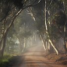 The Adelaide Hills ~ By Popular Demand by LeeoPhotography