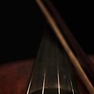 Violin and bow by Erika Gouws