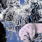 Homage to Winter by Dawn B Davies-McIninch