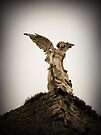 Guardian Angel, Comillas, Spain by David Carton