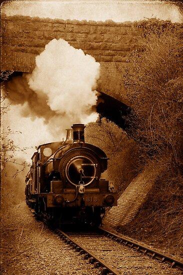 Steam train going under bridge, Shepton Mallet, Somerset, UK by David Carton