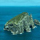 Piercy Island off Cape Brett, New Zealand.......! by Roy  Massicks