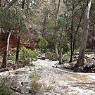 Alligator Gorge - Wilmington South Australia by Linda Hitch