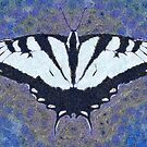 BUTTERFLY SEEKS THE SUN by Jean Gregory  Evans