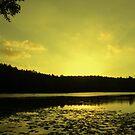 Lake SIngrauli by ravishankar82