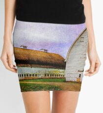 Nisqually Barns  Mini Skirt