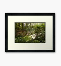 The Land Of Fairy Tales Framed Print