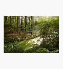 The Land Of Fairy Tales Photographic Print