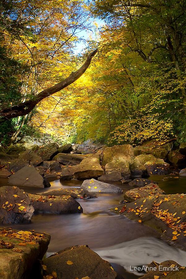 Glade Creek October 2010 by LeeAnne Emrick