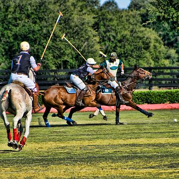 Heat Of The Polo Moment! by DeerPhotoArts
