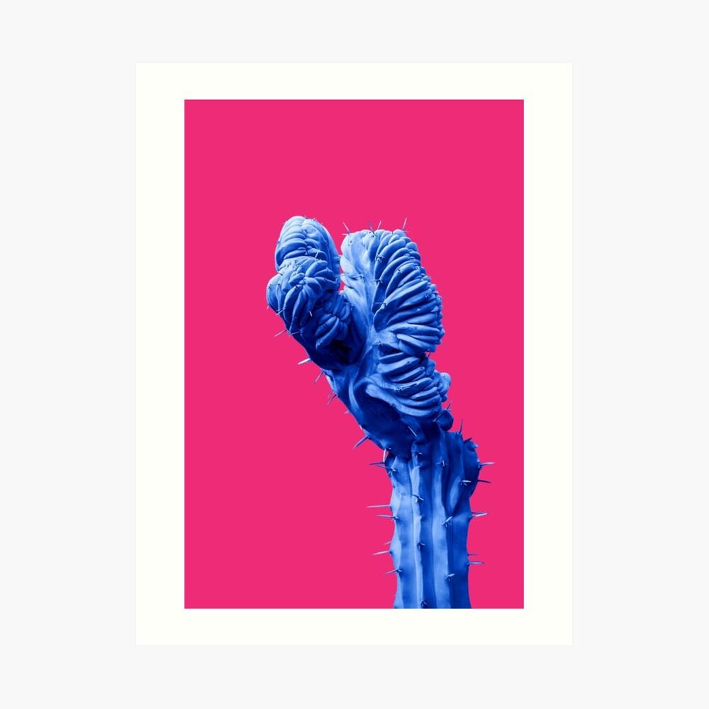 Funky Cactus Art Print