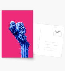 Funky Cactus Postcards
