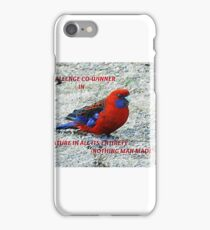 Co-winner- Banner - Nature in all its Entirety/Nothing Man Made Challenge winner iPhone Case/Skin