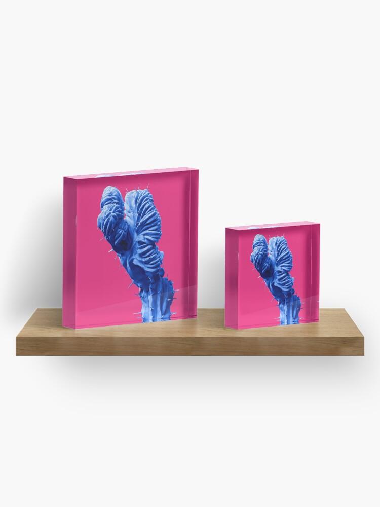 Alternate view of Funky Cactus Acrylic Block