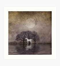 A White Horse in the Pond Art Print