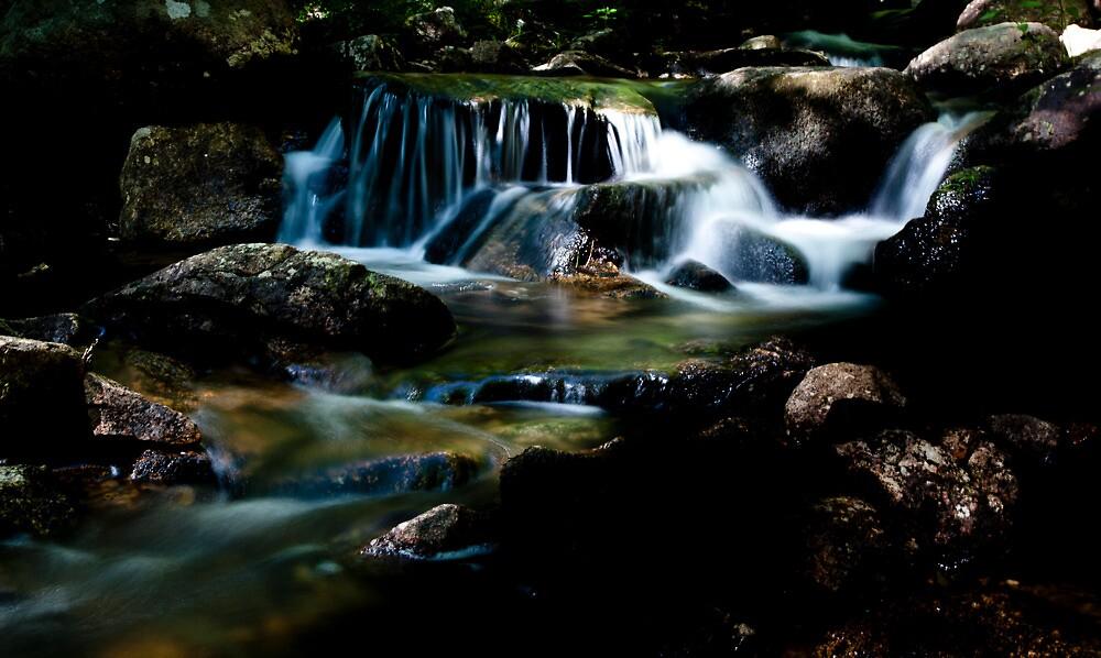 Jordan Stream #1 - Acadia National Park by David Clayton