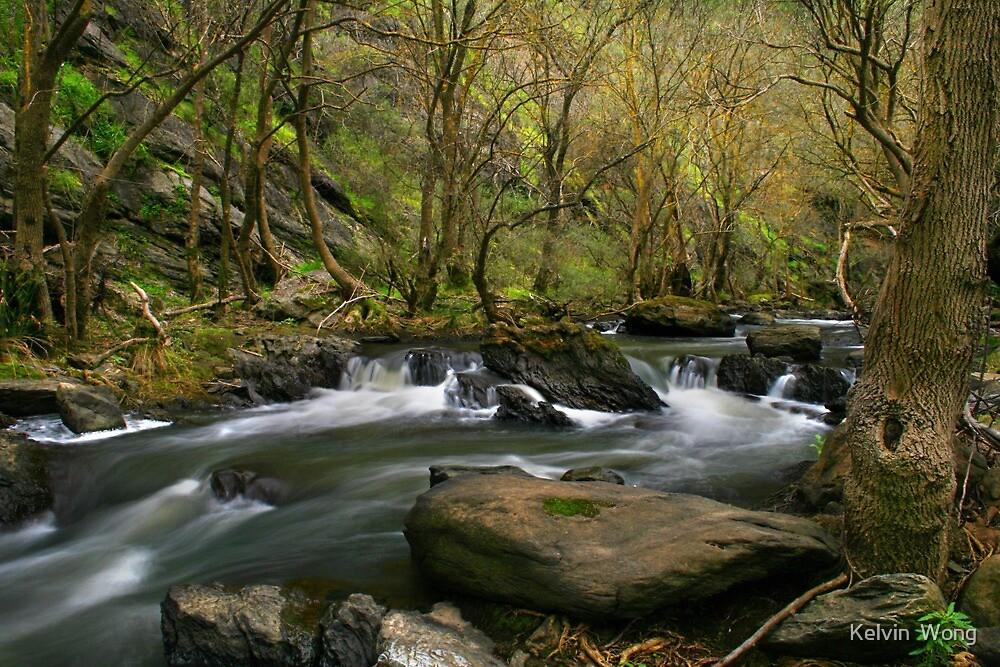 Torrens River by Kelvin  Wong
