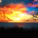 Fiery Sunset von Jasmina Seidl