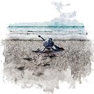 Baby Sea Turtle Waling - Watercolor  by mavisshelton