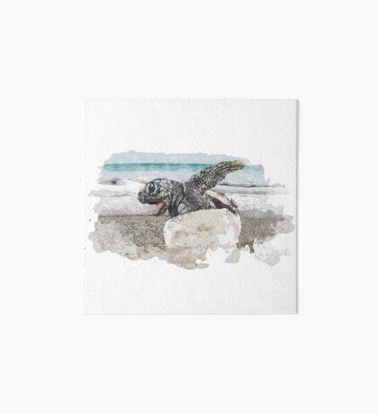 Baby Sea Turtle Hatching - Watercolor Art Board Print