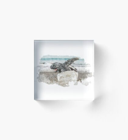 Baby Sea Turtle Hatching - Watercolor Acrylic Block