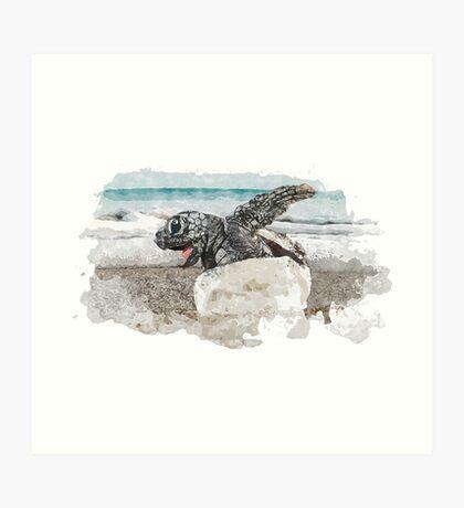 Baby Sea Turtle Hatching - Watercolor Art Print