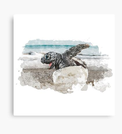 Baby Sea Turtle Hatching - Watercolor Canvas Print