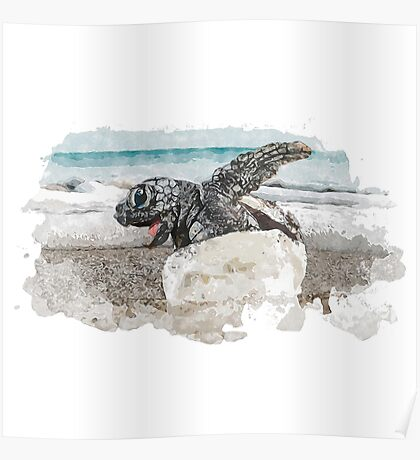 Baby Sea Turtle Hatching - Watercolor Poster