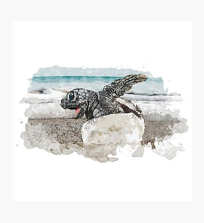 Baby Sea Turtle Hatching - Watercolor Photographic Print
